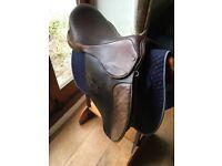 Horses saddle