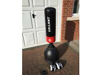 Free standing punch bag and gloves
