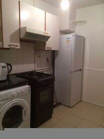 Double rooms professional female flatmates wanted