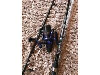 Mitchell Carp Pike fishing rod and Reel
