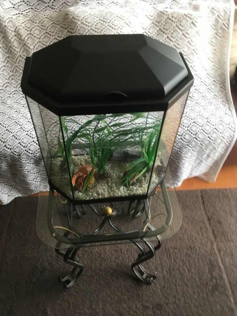 "16"" deep 15"" wide Fish tank and filter"