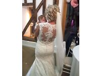 Ronald Joyce Evelyn wedding dress