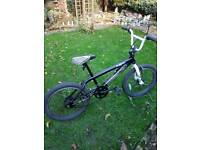 Boys BMX 360 giro bike