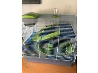 Two male gerbils plus cage