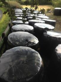 Round bale silage (farm hay haylage sheep horses calves)