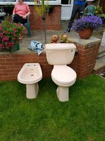 Bidet and w.c discontinued pink