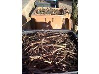 Kindling - Seasoned - Ideal for wood burner, chimnea etc..