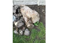 FREE Tree Stumps (Various Sizes)
