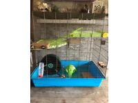 Extra large rat cage with large wheel