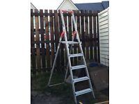 Step Ladder. Standard size.
