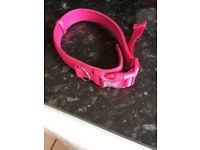 Brand New without tags Large Dog Collar