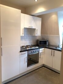 Looking for a flatmate for nice two bedroom flat on Cleveland street