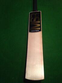 2lb 9oz - SH - English Willow Cricket Bat - £65 OFF - Grade 1 - 874