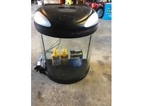 39 Litre fish tank / 12 live fish / accessories