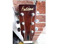 Falcon FG100N Acoustic Guitar