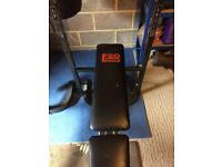 Gym bench and weights