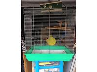 Large rats cage