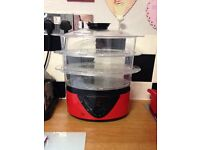 Egl electric steamer good condition