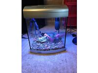 28l aqua start fish tank full set up with light filter heater gravel ornament all clean and all work