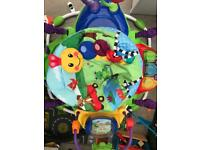 Baby Einstein neighbourhood friends activity jumperoo