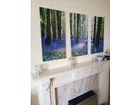 Wall canvas trio