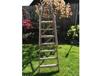 Step Ladder with top support
