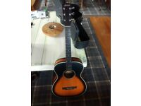 Larrivee Pete Anderson Satin Finish PAOM03ME 1999 Flamed Maple Back and Sides