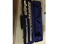 Flute - Great for a beginner, good condition,hardly used