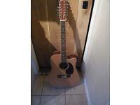 Acoustic 12 string guitar.