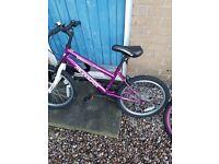 2 girls bmx bikes