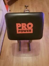 Pro Power preacher bench plus extras