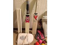Cricket bats, balls, pads, gloves, wickets, stumps, thigh pad, wicket keeping gloves