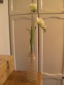 Flower Vases Selection