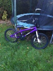 Purple BMX 20inch