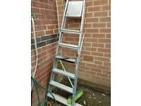 Beldray 6 steps and platform aluminium ladder