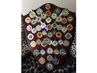 Display Shields for Medals