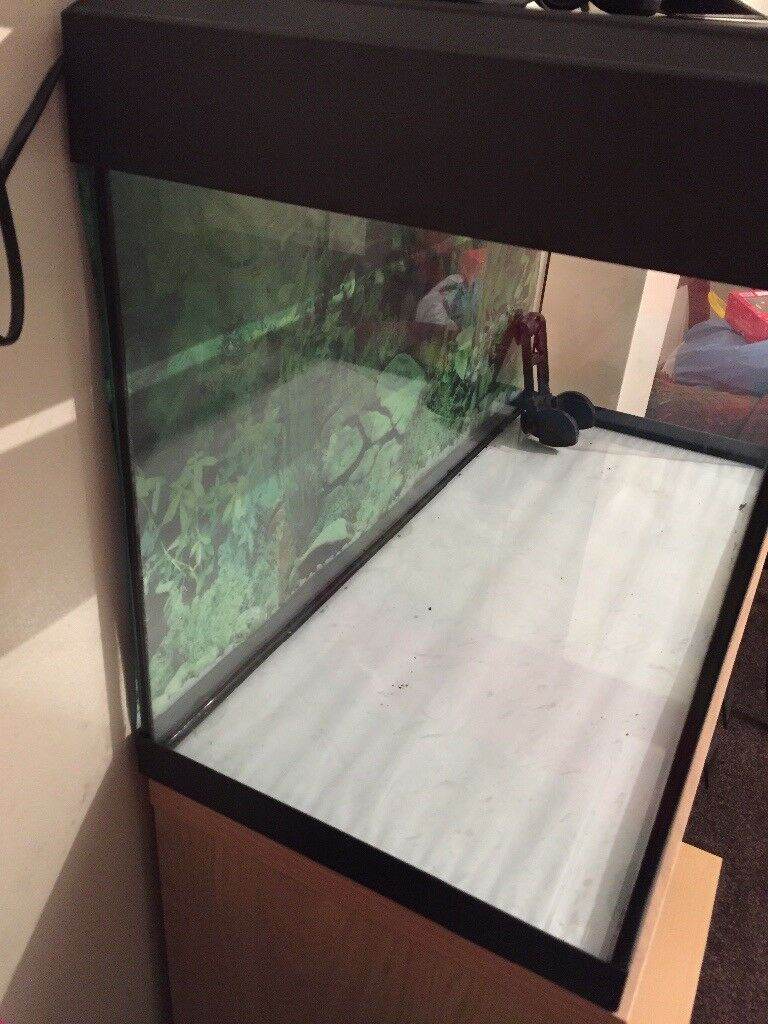 Large fish tank with unit