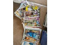 31 X BBC Wildlife Magazine Job Lot, Mostly Unread & in Excellent Condition