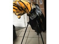 Gold bag and clubs