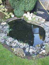 8ft Pond with Accessories. £150