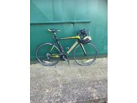 Boardman Road Team Carbon 55 CM