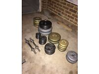 Weights, bench and shakes
