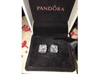 Beautiful in worn Pandora earrings