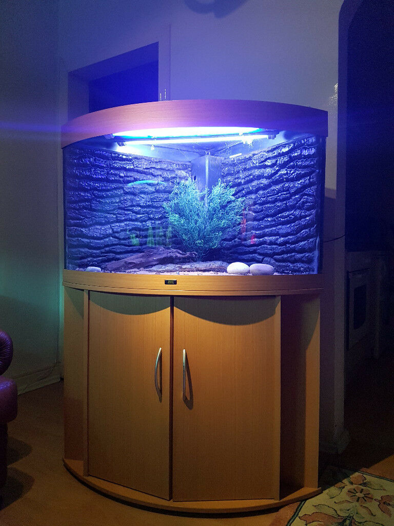 Juwel 190 liter corner fish tank and stand for sale in for Corner fish tank for sale