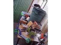 ASSORTED ITEMS JOB LOT water butt, plants, Moses basket, antique books, bric a brac
