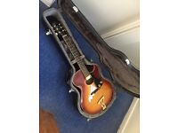 IMMACULATE WASHBURN GUITAR ACOUSTIC / electric