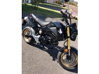 Honda MSX 125 grom may px swap why car bike supermoto ktm 125 390 bigger sports bike