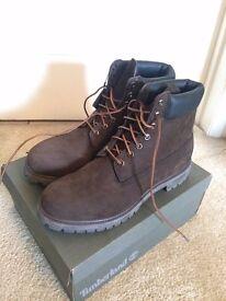 BRAND NEW - Timberland 6 Inch Premium Boot, Mens UK 12.5