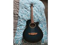 Electro acoustic Bass Guitar (concerto)