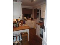 Single room for rent in Motcombe Village, Eastbourne